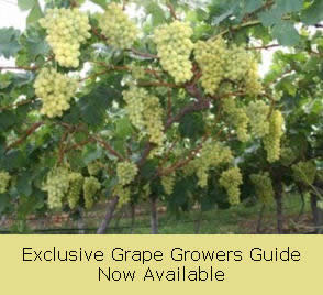 Grape Growers Guide